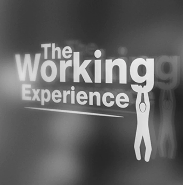 The Working Experience Podcast: Episode 393 – Fly Away with Nick Tarascio